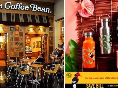 Coffee Bean邀你一起拯救犀鸟!